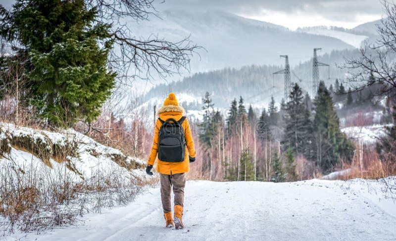 Reisender im Winterwald lizenzfreie stockbilder