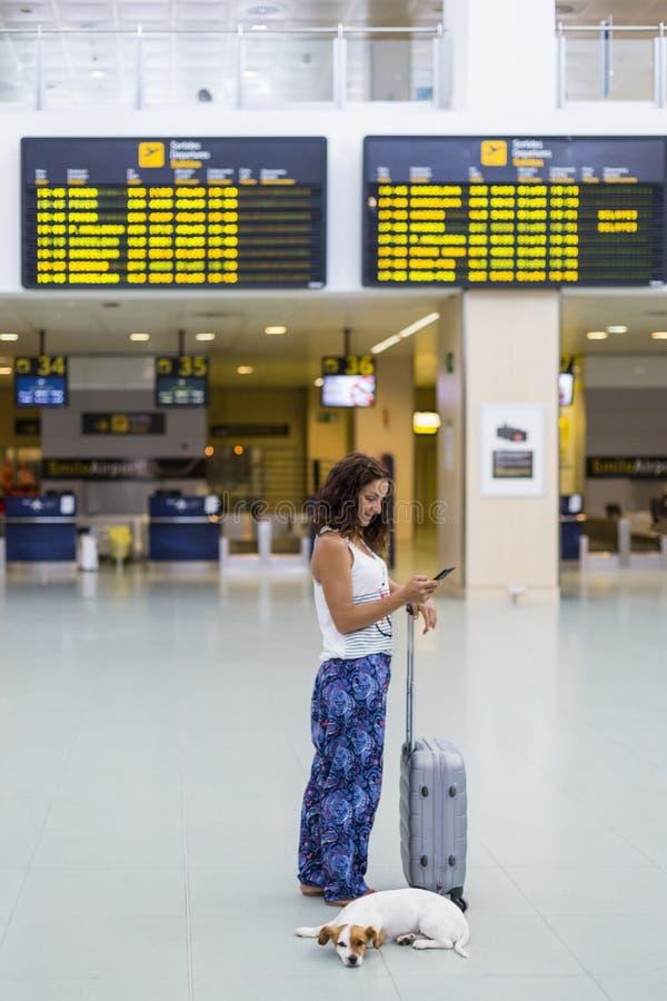 Reisendfrau, die Handy am Flughafen verwendet Informationsschirmhintergrund Reise und Transport mit Technologie lizenzfreie stockbilder