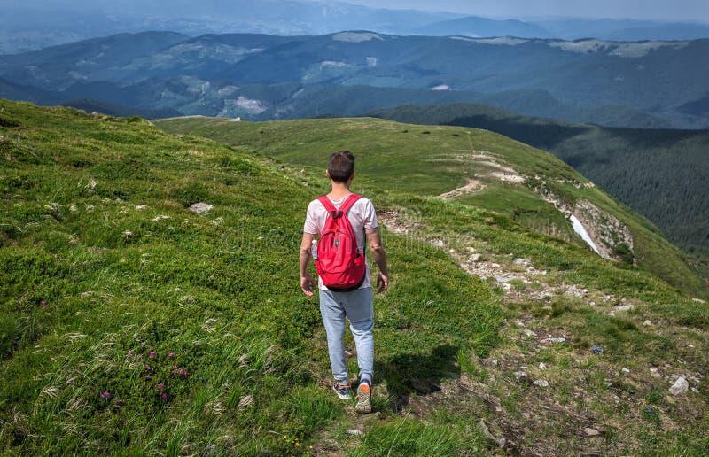 Reisendmann mit Rucksack geht Sommerberg Grüner Hintergrund, im Freien lizenzfreie stockfotografie