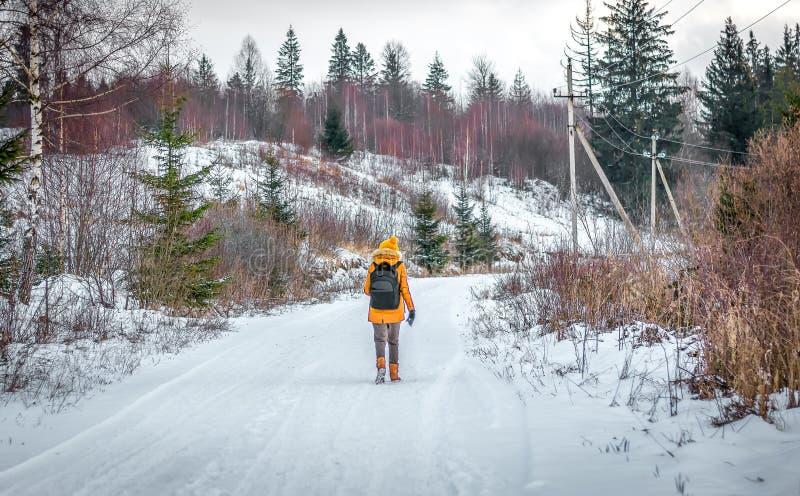 Reisendtourist ist Winter im Wald mit einem Rucksack lizenzfreie stockfotos