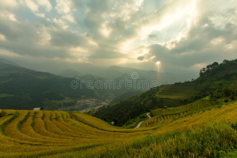 Reisfeld auf terassenförmig angelegtem und bewölktem in MU Cang Chai Vietnam lizenzfreies stockbild