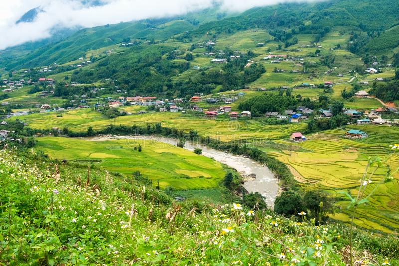 Reisfeld mit Fluss im Tal am Stammes- Dorf stockbild