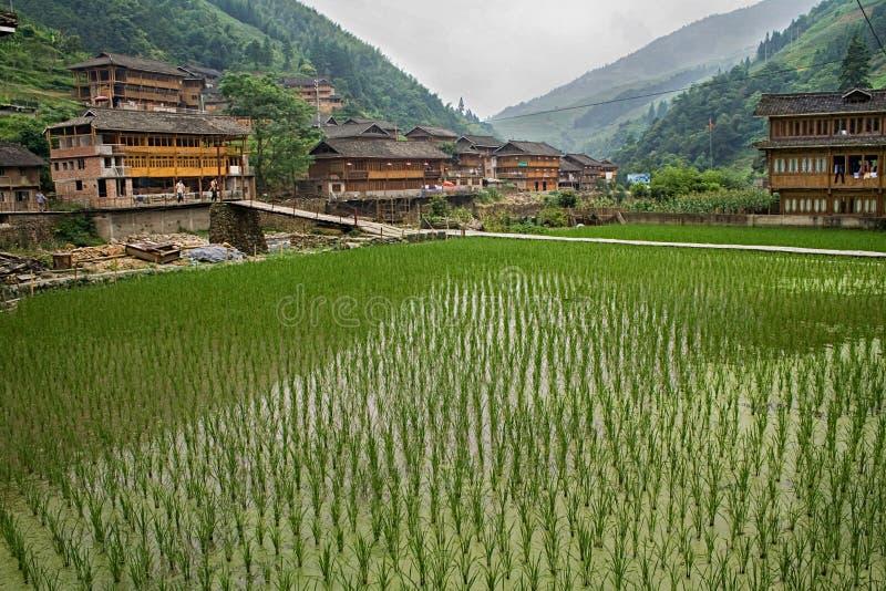 Reisfelder und traditionelles Holzhaus-Dorf roten Yao-Stammes Longsheng Huangluo Yao Village Guilin, Guangxi, China lizenzfreies stockbild