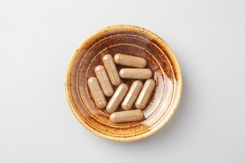 Reishi Mushroom Extract Begreppet kosttillskott är hälsosamt Ljusbakgrund arkivbilder