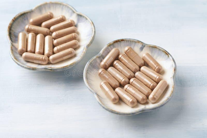 Reishi Mushroom Extract Begreppet kosttillskott är hälsosamt Ljusstark bakgrund av trä royaltyfria bilder