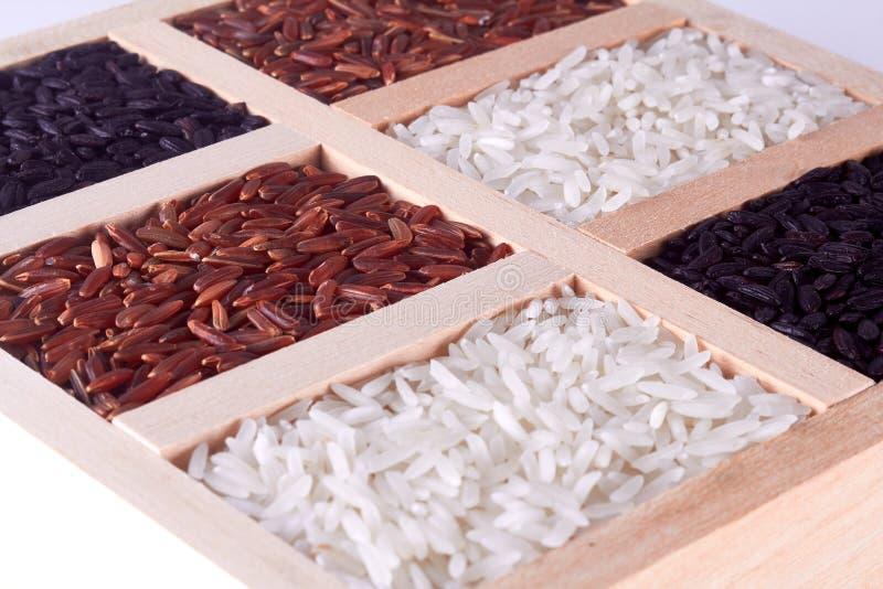 Reismischung in der hölzernen Platte lizenzfreies stockfoto