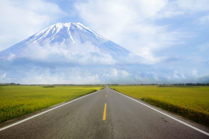 Reispaddy hat Bahn mit Gebirgshintergrund stockfoto