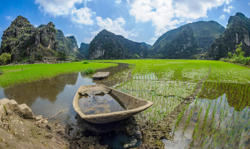 Reispaddyskiff in ninh binh, Vietnam stockbild