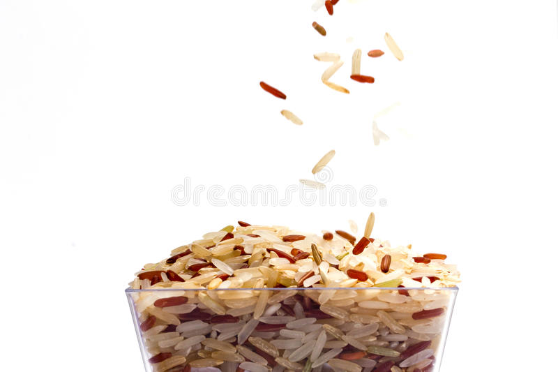 Reisstartwert für zufallsgenerator stockbild