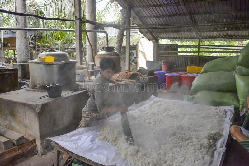 Reisweinfabrik, der Mekong-Delta, Vietnam lizenzfreies stockbild