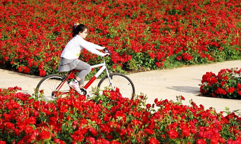 Reiten durch Blumen lizenzfreie stockfotografie