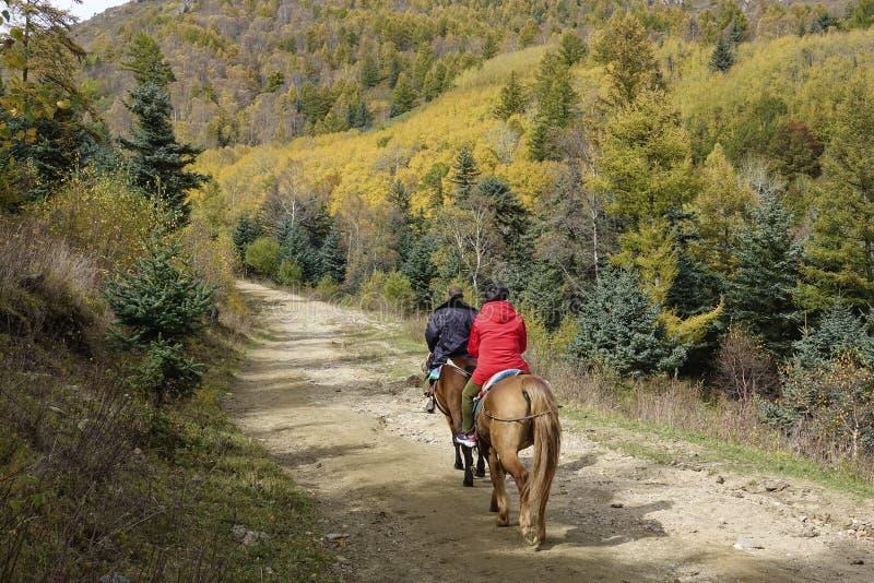 Reiten in Herbst stockbild