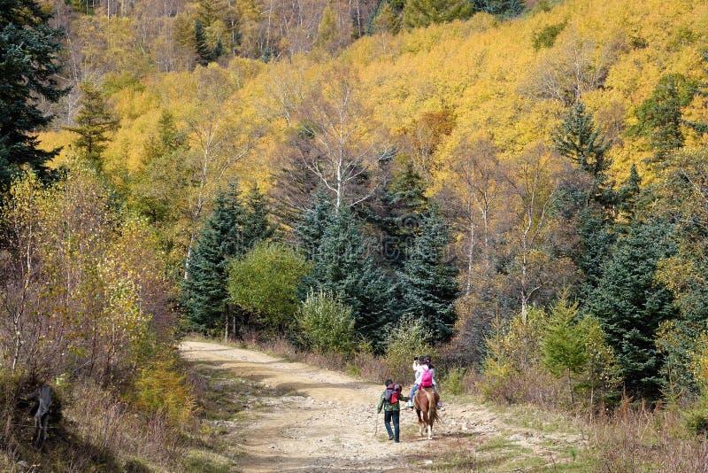 Reiten in Herbst stockfoto
