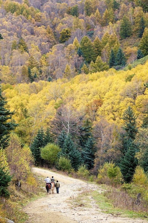 Reiten in Herbst lizenzfreies stockfoto