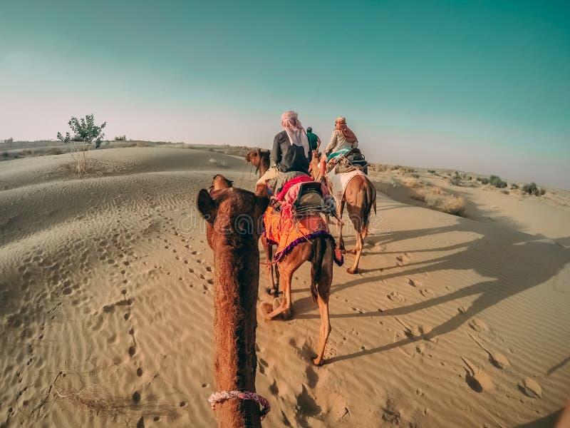 Reitenkamele der Leute in einer Wüste in Indien mit den Abdrücken, die auf dem Sand darstellen stockfotografie