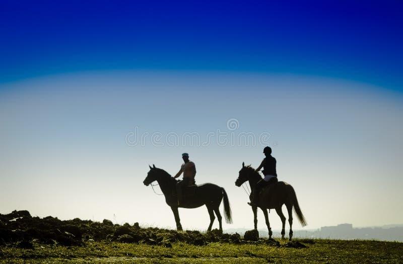 Reiter auf dem Feld lizenzfreies stockbild