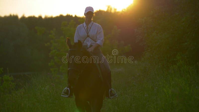 Reiter des jungen Mädchens mit einer weißen Baseballmütze, die ein braunes Pferd reitet stockfotos