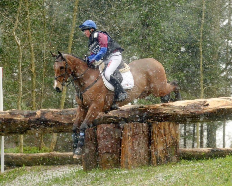 Reitersport: das Pferdespringen lizenzfreie stockbilder