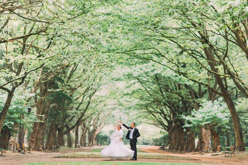 Reizend Bräutigam der glücklichen Hochzeitspaare und blondes Brauttanzen im Park am sonnigen Tag stockfoto