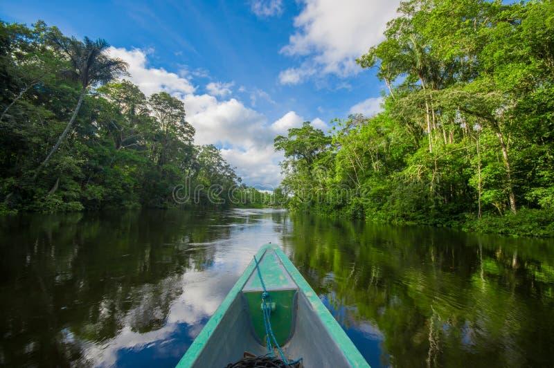 Reizend door boot in de diepte van de Wildernissen van Amazonië in het Nationale Park van Cuyabeno, Ecuador stock afbeelding
