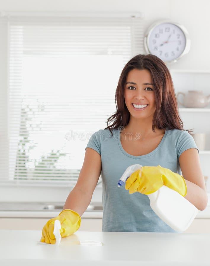 Reizend Frau, welche die Hausarbeit tut stockbild