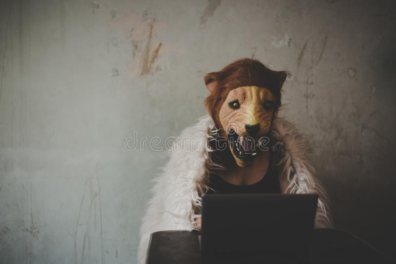 Reizend schöne Hackerfrau des Porträts lizenzfreie stockbilder