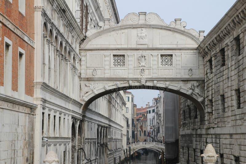 Reizend und freundlich Venedig stockfotografie