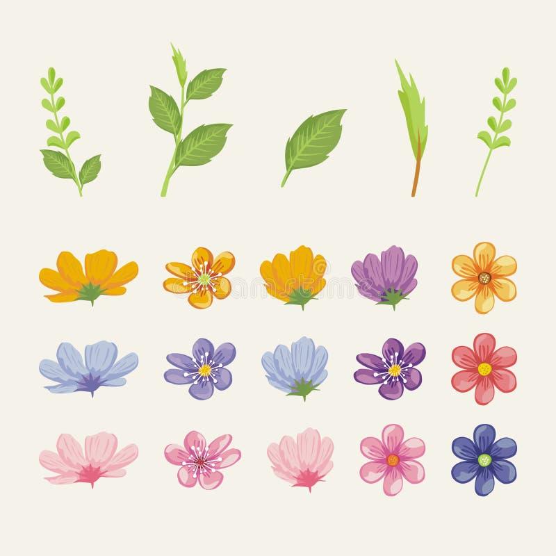 Reizende Blumen grundlegend mit weicher und modischer Farbe vektor abbildung