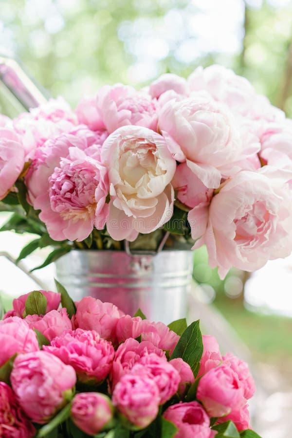 Reizende Blumen im Glasvase Schöner Blumenstrauß von rosa Pfingstrosen Blumenzusammensetzung, Szene, Tageslicht tapete lizenzfreies stockbild