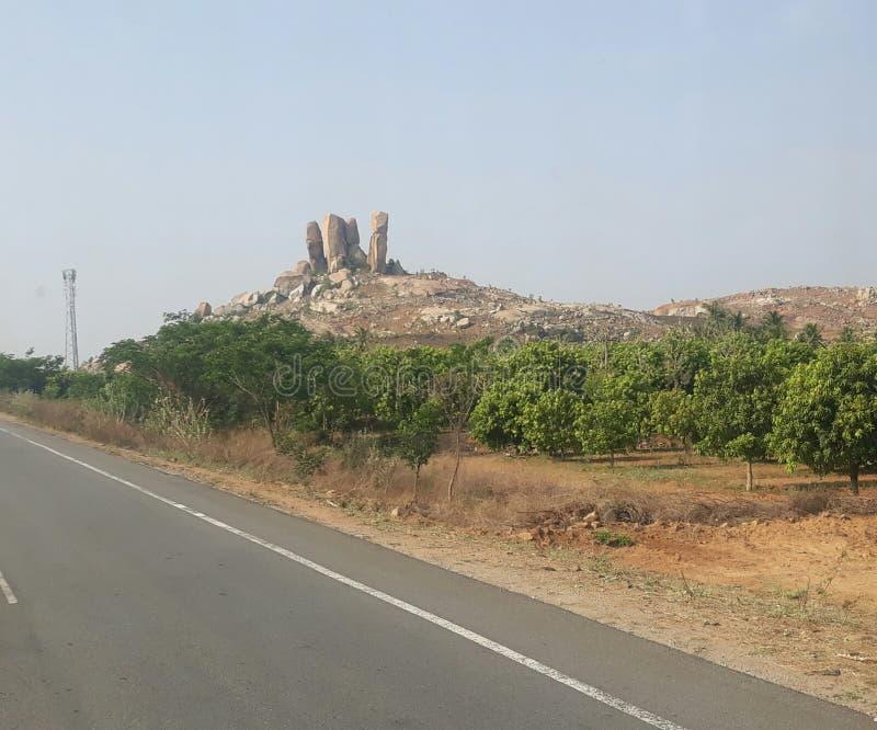 Reizende de bomenberg van de vakantieaard madhypradesh stock afbeelding