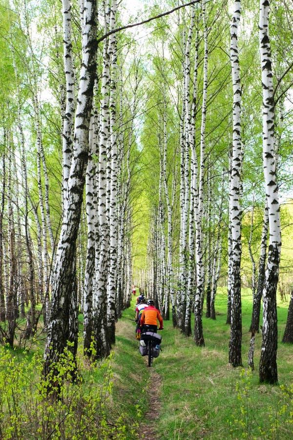 Reizende fietsers stock foto