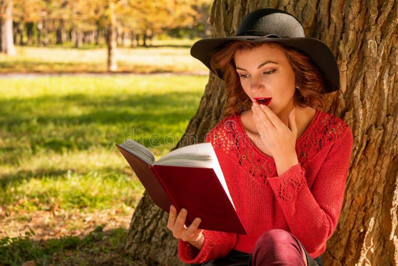 Reizende Frau, die ein Buch im Herbst Park sitzt auf dem Gras liest stockbild