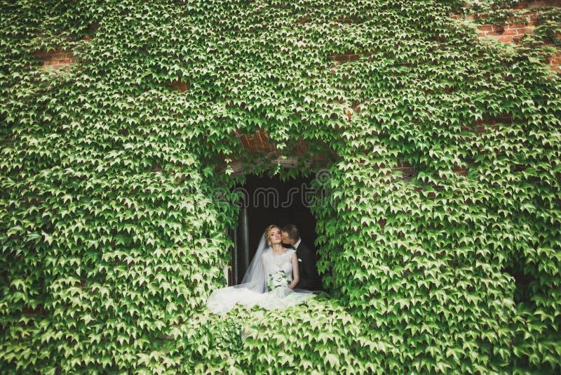Reizende glückliche Hochzeitspaare, Braut mit dem langen weißen Kleid, das in der schönen Stadt aufwirft stockbilder