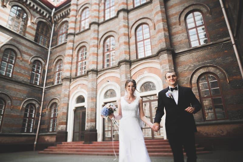 Reizende glückliche Hochzeitspaare, Braut mit langem weißem Kleid stockfoto