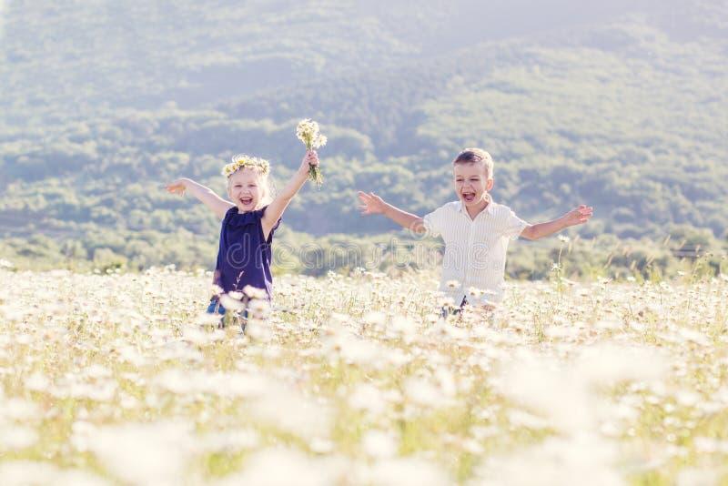 Reizende kleine Kinder auf dem Gebiet von Gänseblümchen stockfotos