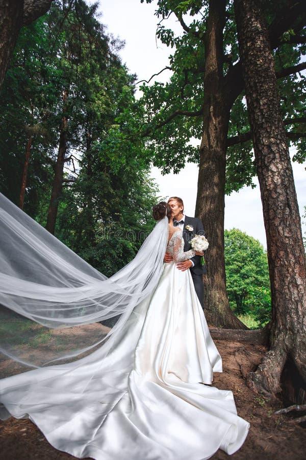 Reizende Paare in der Liebe, die am Tag der Hochzeit sich küsst, die sie sogar im Park stehen stockfotografie