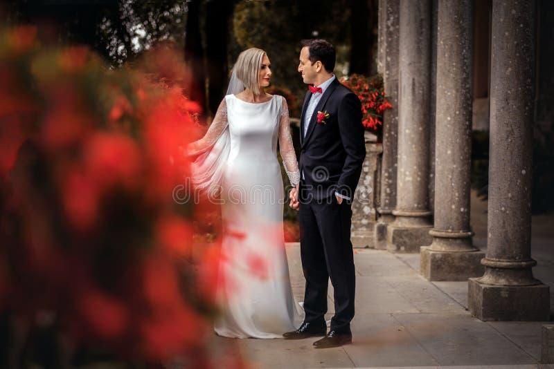 Reizende Paare von Jungvermählten - Braut und Bräutigam, die draußen um einen alten schönen Steinpalast gehen stockfoto