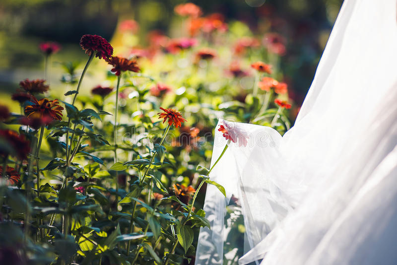 Reizender Brautschleier mit Blumen lizenzfreie stockfotos