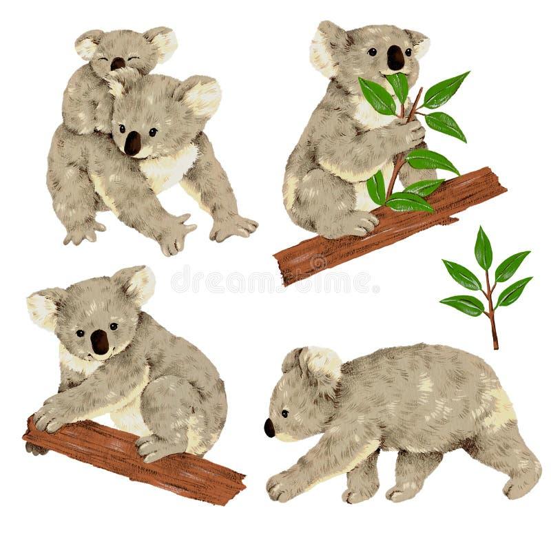 Reizender Koala stock abbildung