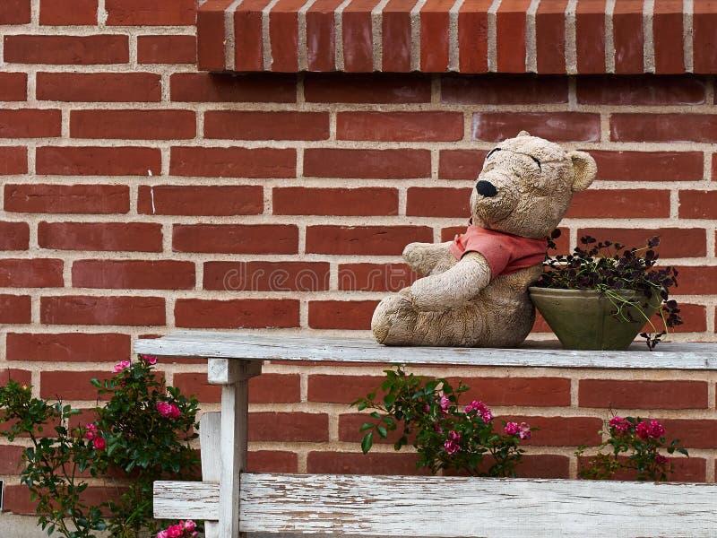 Reizender netter Teddybär, der auf einer Bank setzt stockfoto