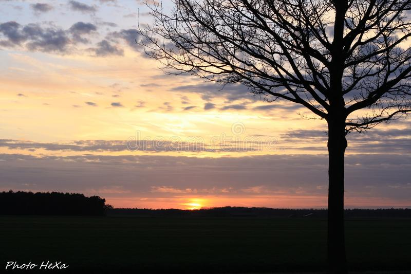 Reizender Sonnenaufgang stockfotos