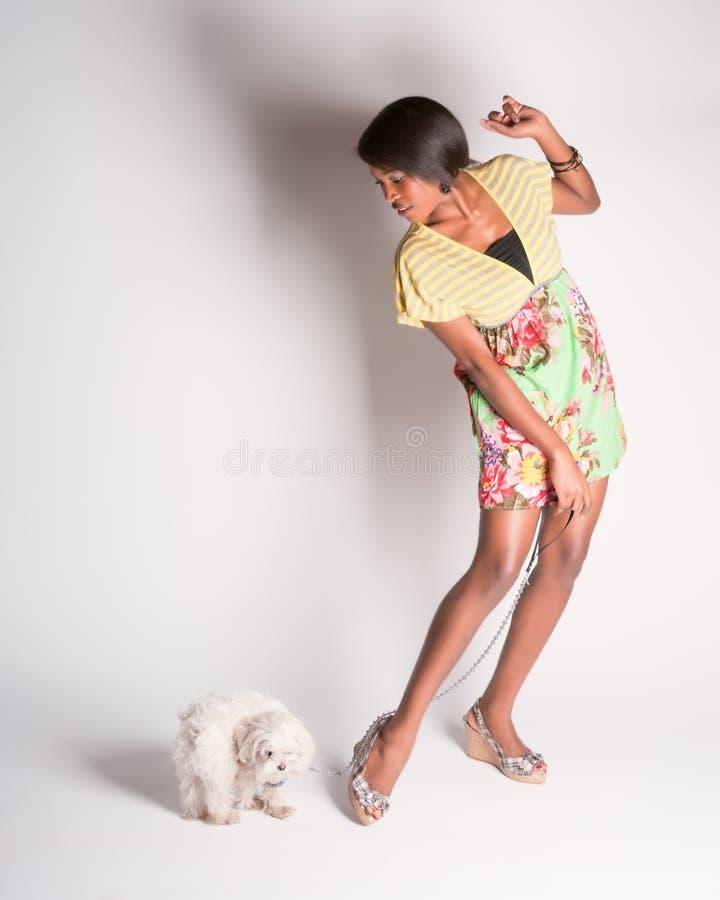 Reizendes gehendes pinup Mädchen ein Hund stockfoto