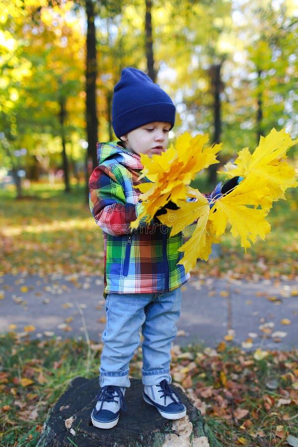 Reizendes Kleinkind mit Ahornblättern im Herbstpark lizenzfreies stockfoto