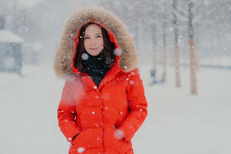 Reizendes weibliches Modell in der roten Jacke, stads im Freien während der Schneefälle, Blicke mit dunklen Augen an der Kamera,  stockfotografie