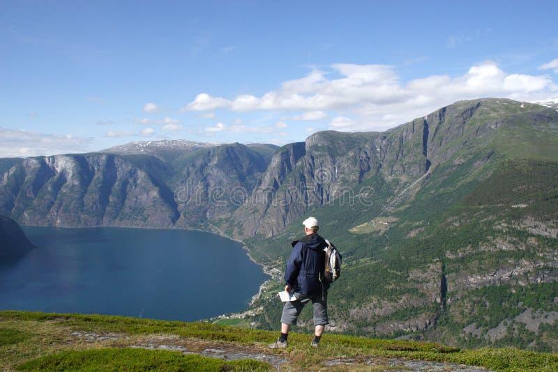 Reiziger in de bergen stock afbeelding