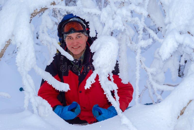 Reiziger in het de winterbos royalty-vrije stock afbeeldingen