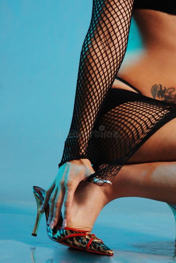 Reizvoller Fishnet stockbilder