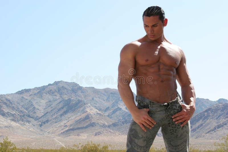 Reizvoller Mann in den Jeans stockfotos