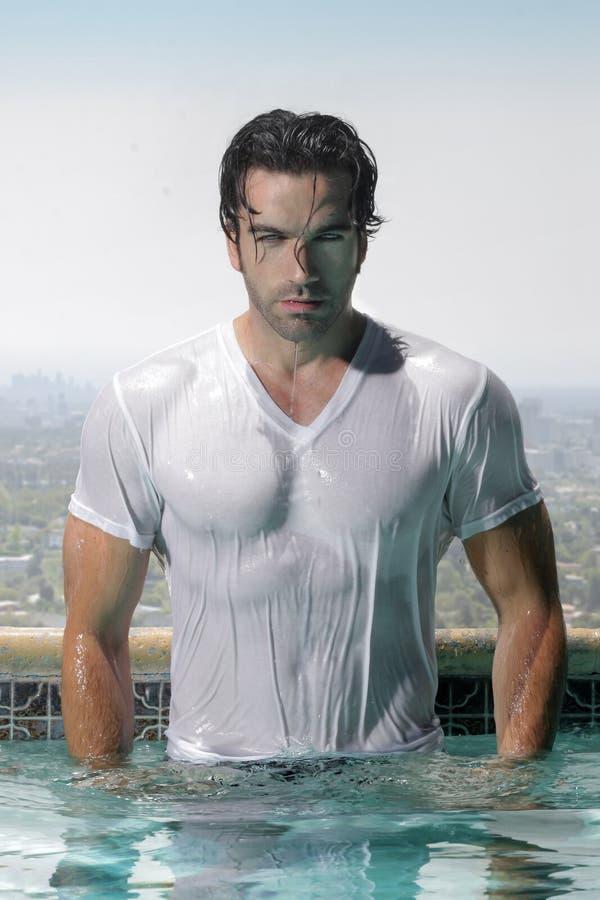 Reizvoller Mann im Pool stockfotos
