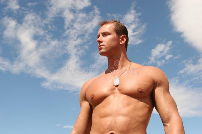 Reizvoller muskulöser attraktiver Mann mit sixpack ABS stockfoto